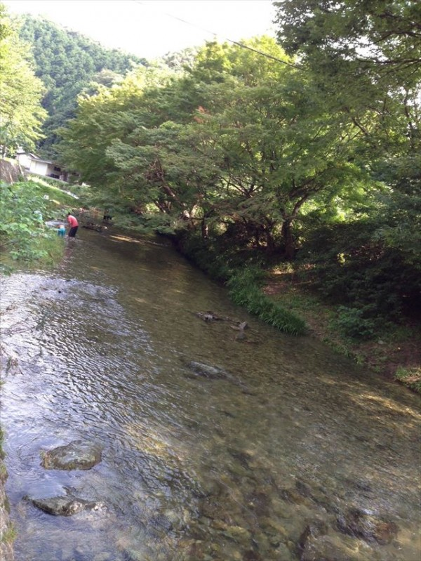 写真 2 (2)_R
