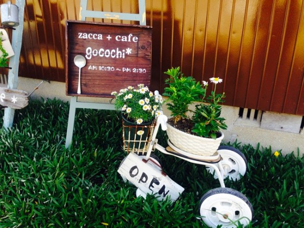 gocochi00_R