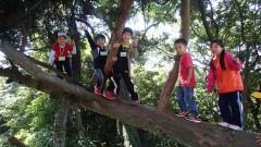 2015年度子供のための自然体験学校 参加者募集